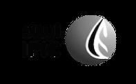 International_Petroleum_Investment_Company_Logo